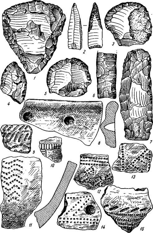 Рис. 4. Характерные типы орудий и керамики стоянок Кустанайской области 1, 4—6,10, 13,14 — Терсек-карагай; 2, 15 — Светлый Джар-куль; 3, 8, 11 — Ак-суат; 7, 9, 12 — «Коль»