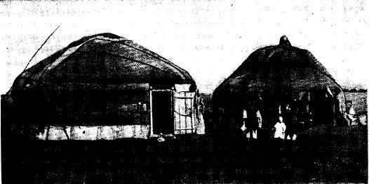 Кибитки казахского (слева) и монгольского (справа) типа (начало XX в.)