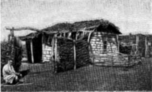 Саманная изба (начало XX в.)