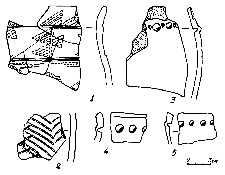 Рис. 1. Поселение Клепиково. Керамика:  1—2 — андроновская керамика; 3—5 — бийская керамика