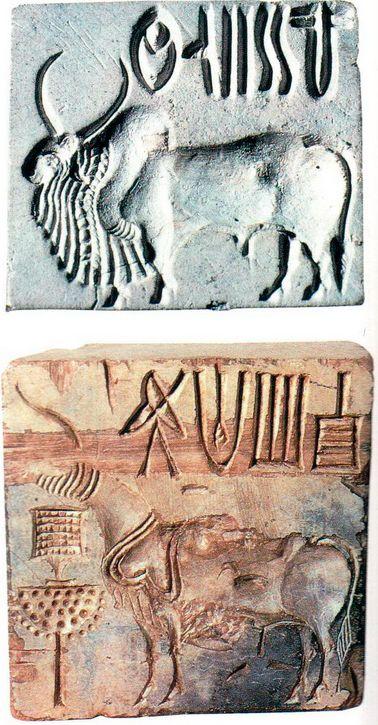 Было найдено более 2500 стеатитовых индских печатей. На большинстве из них изображено какое-нибудь животное и вырезана надпись. Такие печати из Мохенджо- Даро относятся к промежутку между 2500 и 2000 гг. до н.э. На одной из этих двух печатей изображен горбатый бык, на другой — лошадь.