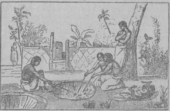 Рис. 9. Печь в Полинезии (Тонга).