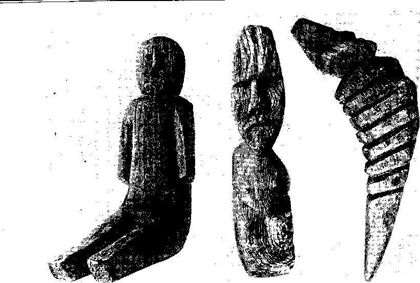 Деревянные идолы «сядеи» ненцев с жертвенных мест