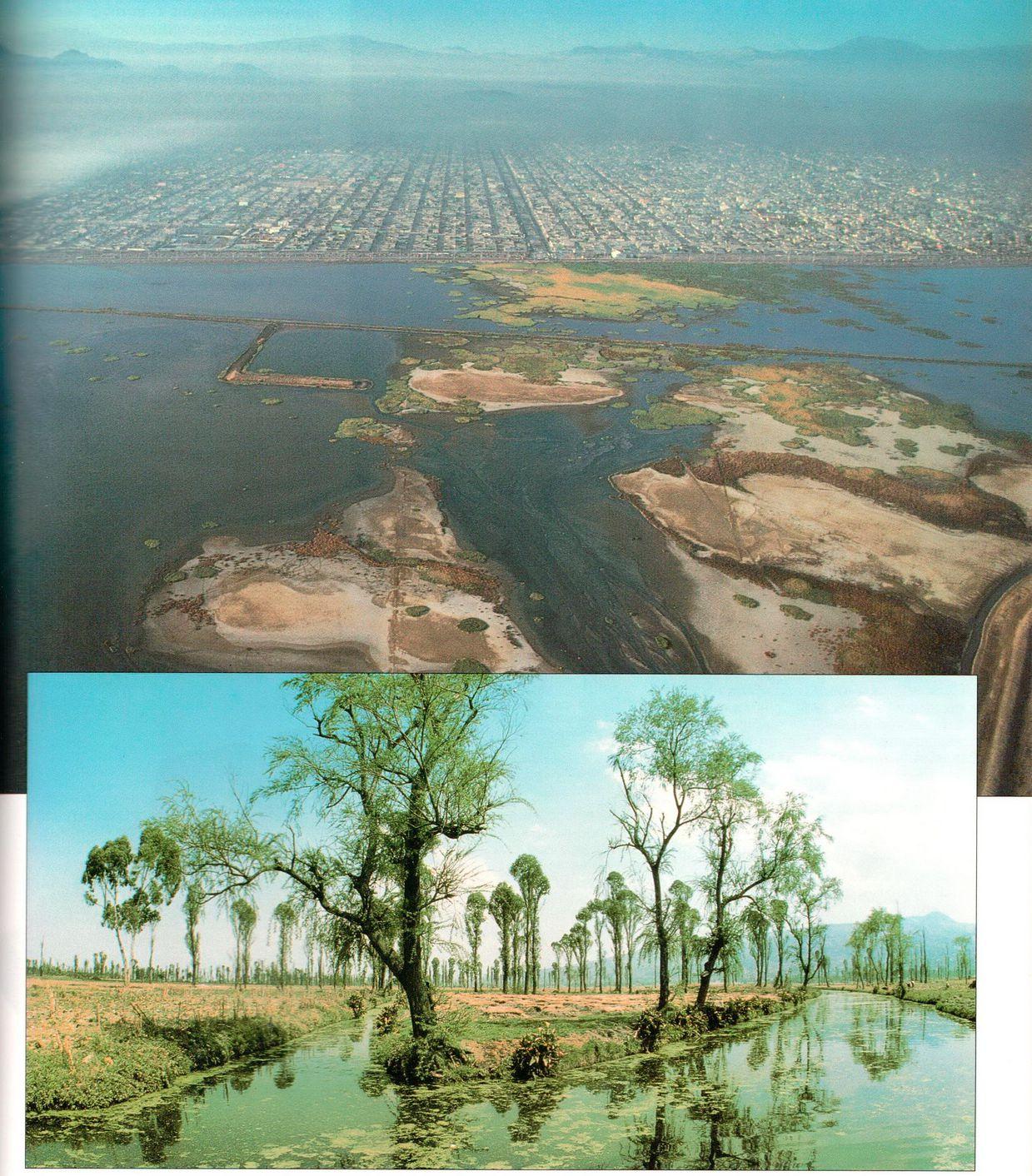 Мехико — один из крупнейших городов мира. Озеро Теекоко, на котором построен город,почти совсем исчезло.