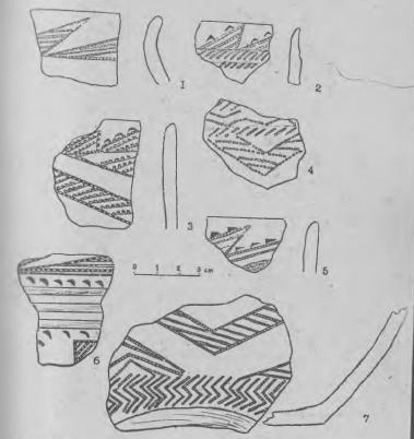 Рис. 3. Поселение Жар-Агач. Керамика 1-й группы. Тип Б.