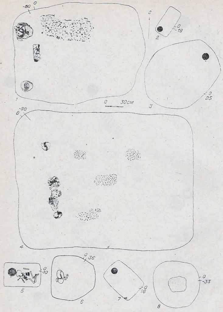 Рис. 57. Погребения андроновской (федоровской) культуры. 1,4 — Абрамово-4; остальное — Преображенка-3. 1 — курган 19, погребение 1; 2 — курган 95, погребение 3; 3 — курган 91, погребение 4 — курган 20, погребение 2; 5 — курган 77, погребение 4; 6 — курган 95, погребение 5; 7 — курган 21, погребение 2; 8 — курган 56, погребение 3.