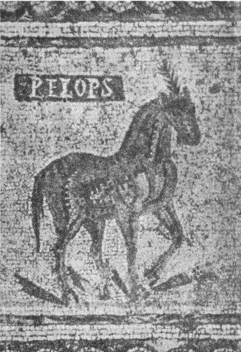Рис. 9. Мозаика из виллы Torre de Palma