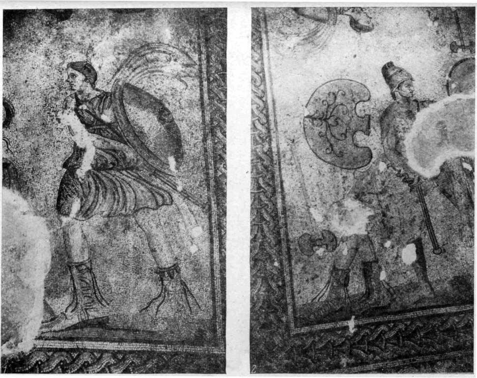 Рис. 29. Фрагменты (1, 2) мозаичного поля с изображением амазономахии