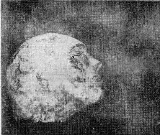 Глиняный скульптурный портрет из могильника Шестаково I
