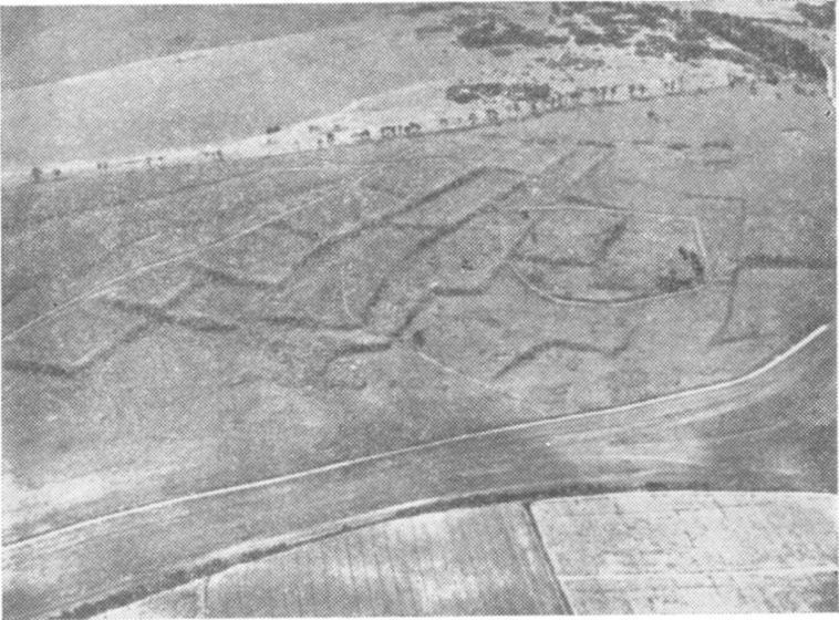 Рис. 6. Аэрофотосъемка. Следы прямоугольных оград, Бэркшир, Англия. (По Д. Хардену)