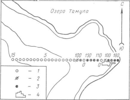 Рис. 7.  Схема взятия проб почвы для фосфатного анализа. (По Л. Веллесте). План неолитической стоянки с обозначением пунктов, где брались почвенные пробы для фосфатных анализов: 1 — 0—20 единиц окраски; 2 — 21 — 50 единиц окраски; 3 — 51 и больше единиц окраски; 4 — раскоп