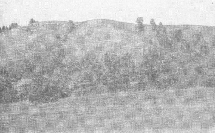 Рис. 12. Селище Уркина Гора (на переднем плане) эпохи железного века. (Куйбышевская экспедиция 1953 — 1954 гг.)
