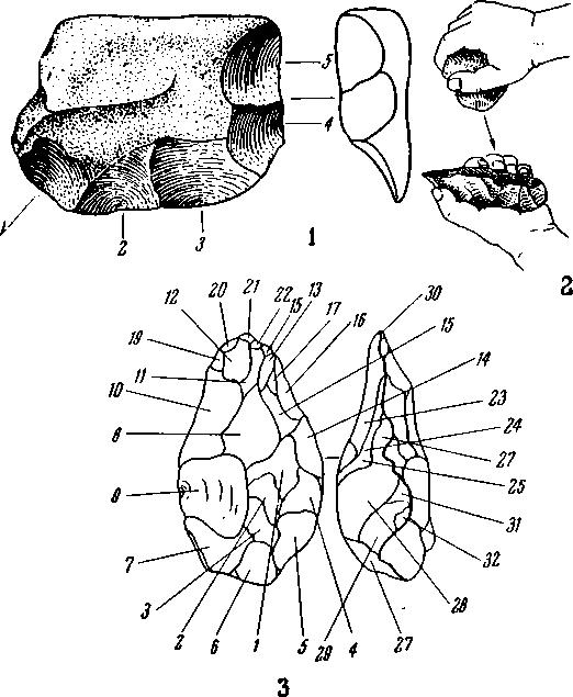 Рис. 1. 1 — рисунок оббитой гальки (цифрами указано число сколов, которыми заострен край); 2,3 — способ оббивки шелльского ручного рубила (цифрами указано число сколов, которыми было оформлено орудие)