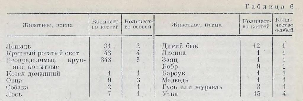 barabinskiy-variant-suzgunskoy-kulturyi-9