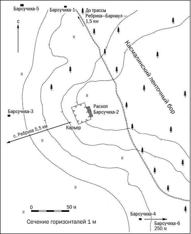 Рис. 1. Памятники археологии на левом берегу р. Барсучиха