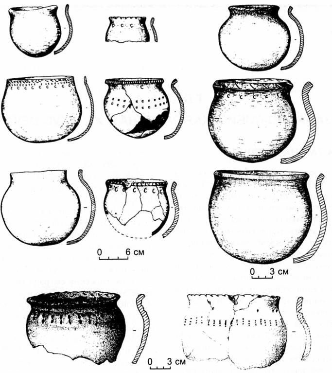 Рис 47. Керамика басандайской культуры из могильника Ташара-Карьер-2.