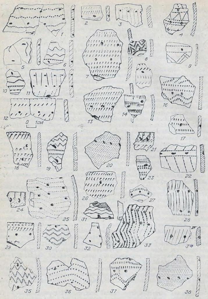 Рис. 3. Фрагменты керамики байрыкского типа. 22, 28, 34 — Кыштовка-1; остальное — Венгерово-3.