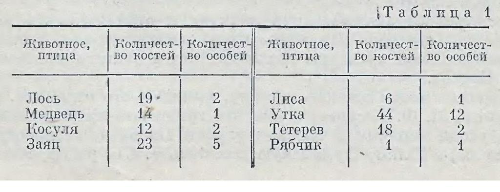 bayryikskiy-etap-8