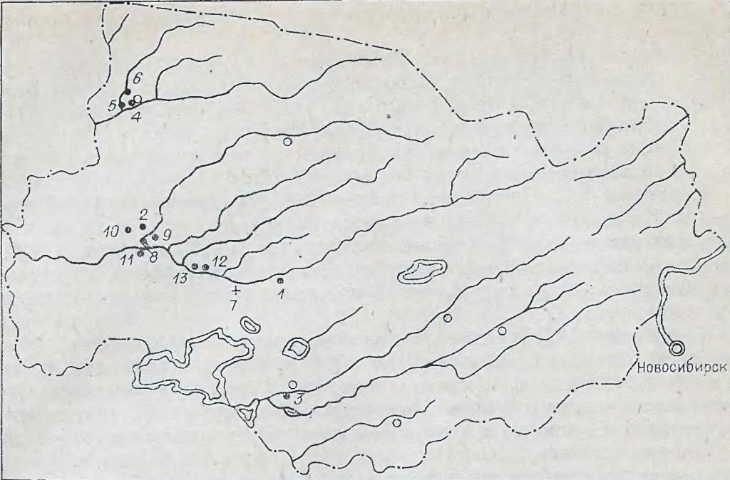 Рис. 2. Схема расположения памятников байрыкского типа в Барабе. 1 — Абрамово-4А; 2 — Венгерово-3 — Каргат-6А, 4 — Кыштовка-1А; 5 — Кыштовка-2А; 6 — Новочекино-ЗА; 7 — Погорелка; 5 — Сопка-3; 9— Сопка-4: 10—Старый Сад-1; 11— Старый Тартас-1; 12 — Тайлаково-1; 13 — Тайлаково-2; * — поселения; + - могильники; О — крупный населенный пункт.
