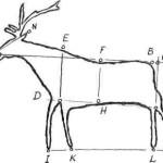 Рис. 9. Базовые точки для формализованного описания