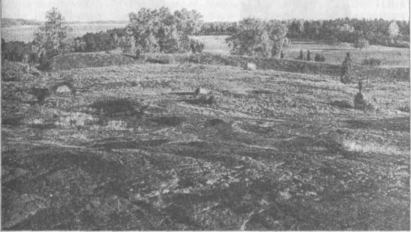 Рис. 54. Бирка, внутренний вид форта с городом (в поясе «Черной Земли»)