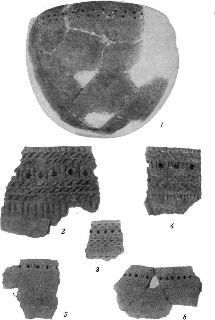 Рис. 28 а — керамика из среднего слоя городища Большой лог