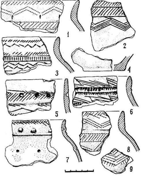 Рис. 2. Керамика Ново-Шадрино II