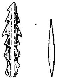 Рис. 131. Гарпун из оленьего рога (2/5) и костяной наконечник стрелы (1/3) (Швейцария).