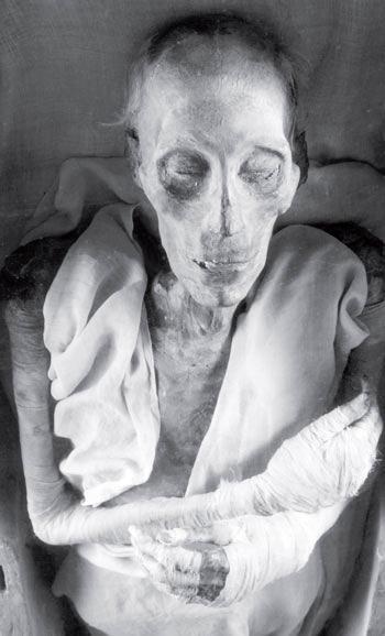 Рис. 16.1. Мумия египетского фараона Рамзеса II (1279–1212 гг. до н. э.)