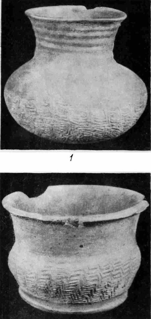 Рис. 3. Сосуды с вдавленным орнаментом, относящиеся к эпохе неолита. 1 — из Миньцина (провинция Фуцзянь); 2 - из Деяна (провинция Цзянсу).