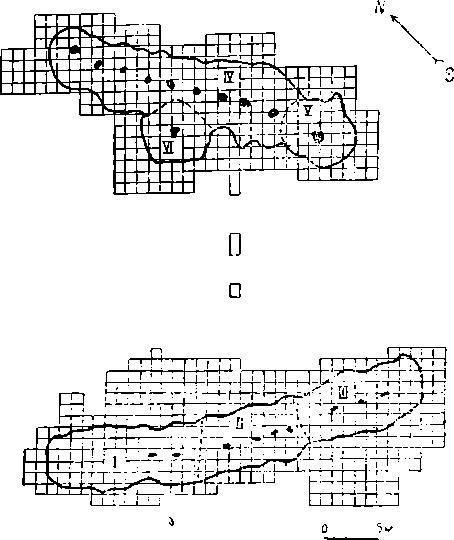 Рис. 10. Палеолитическое поселение Костенки IV (план). Наверху раскоп 1938 г.; внизу раскоп 1937 г.