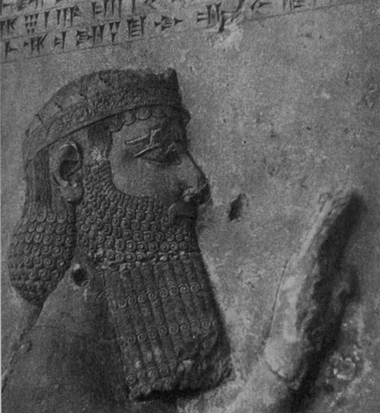 65. Голова Дария на рельефе в Бехистуне.
