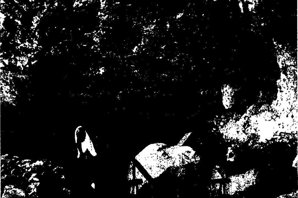 Рис. 42. Копия петроглифов северо- западного Вайоминга, выполненная Олсон