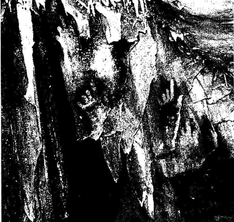 """Рис. 36. Изображения кистей рук с предплечьем связаны с первой фазой изобразительной деятельности в пещере Коске. Примерно 27 тысяч лет назад были выполнены по трафарету"""" кисти рук и так называемые макароны"""