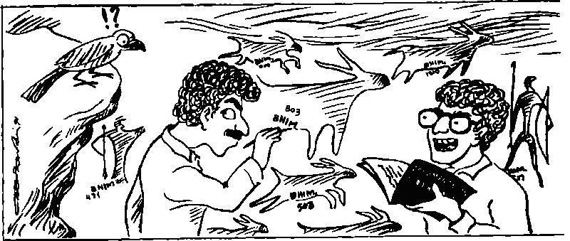 Рис. 46. Карикатура из индийского журнала по наскальному искусству, выпуск которого в частности был посвящен профессиональной этике исследователей
