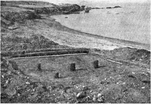 Рис. 1. Раскопанные остатки дома на Руссекейла II