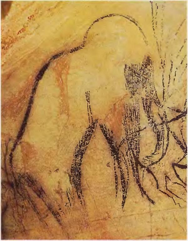 Мамонт. Пеш-Мерль (Франция). Верхний палеолит.