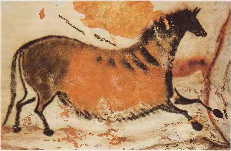 Лошадь из Осевой галереи. Ласко (Франция). Верхний палеолит