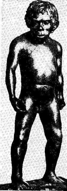 Неандертальский мальчик из пещеры Тешик-Таш. Реконструкция М. М. Герасимова