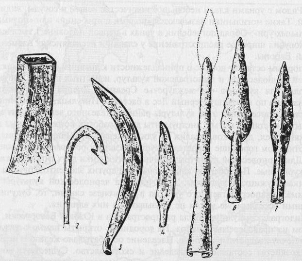Железные предметы зарубинецкой культуры: 1 — кельт; 2 — крючок; 3 — серп; 4 — нож; 5—7— наконечники копий