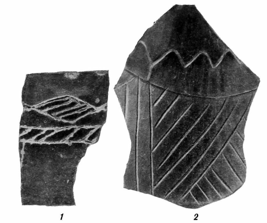 Рис. 58. Фрагменты керамики: 1 — край лепного лощеного сосуда VII — начала VI в. до н. э; 2 — обломок лощеного сосуда X—XI вв. н. э.