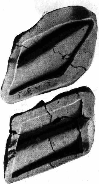 Рис. 5. Формы для изготовления части одежды из так называемой мастерской Фидия.