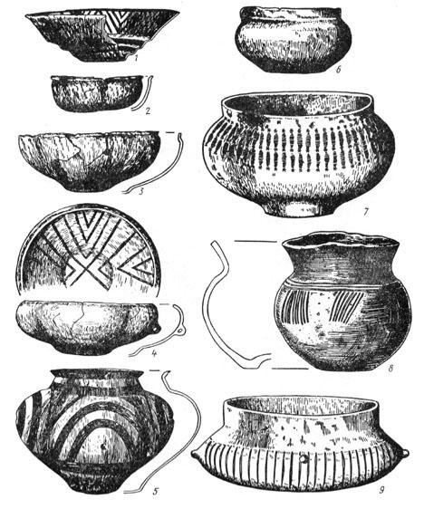 Рис. 28. Керамика из Гальштатского могильника: 1, 2, 3, 4 — миски, 5 — грушевидный сосуд, 6, 7, 8, 9 — горшки