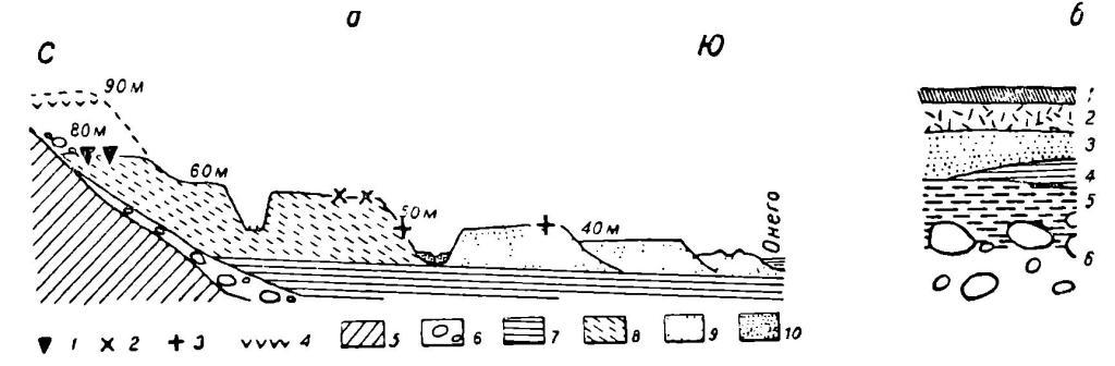 Рис. 3. Схематический геологический разрез. а — разрез района г. Медвежегорска: 1 — мезолит; 2 — неолит развитой; 3 — неолит поздний; 4 — фауна морских моллюсков; 5 — скала; 6 — морена; 7 — ленточные глины; 8 — флювио-гляцнальные пески; 9 — озерные пески (онежские); 10 — аллювиальные пески. б — разрез стоянки у с. Вознесенье: 1 — гумусовый слой; 2 — щепа; 3 — песок; 4 — намывной торф; 5 — культурный слой; 6 — морена.