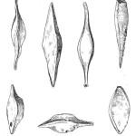 Рис. 5. Железные крицы