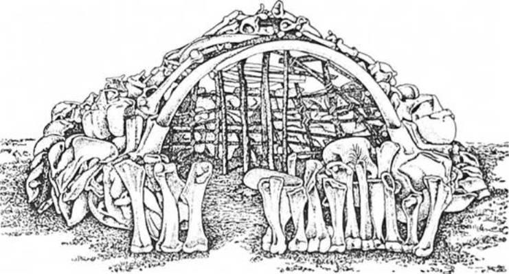 Рис. 13. Житло з кісток мамонта зі стоянки Межиріч у Пороссі
