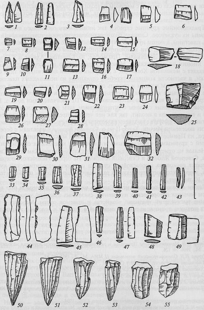 Мезолит севера Европейской России: 1—49 — микропластины; 50—55— мезолитические карандашевидные нуклеусы (по С.В. Ошибкиной)