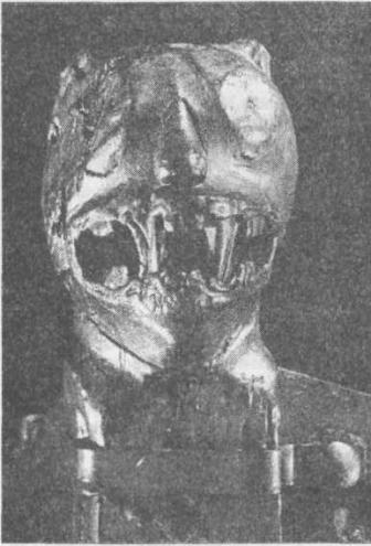 Рис. 113. Украшение в виде головы на санях Шетелига, найденных в Усеберге. Такие головы, очевидно, предназначались для того, чтобы внушить страх, который был важным элементом при создании художественного эффекта. Музей кораблей викингов, Осло