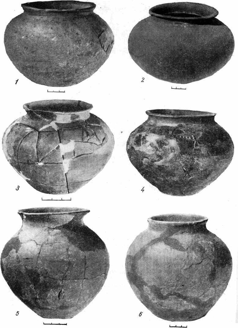 Рис. 3. Образцы форм майкопской керамики с углубленными оттисками на днищах. 1—5 — Бамутский могильник; 6 — курган у с. Лескен