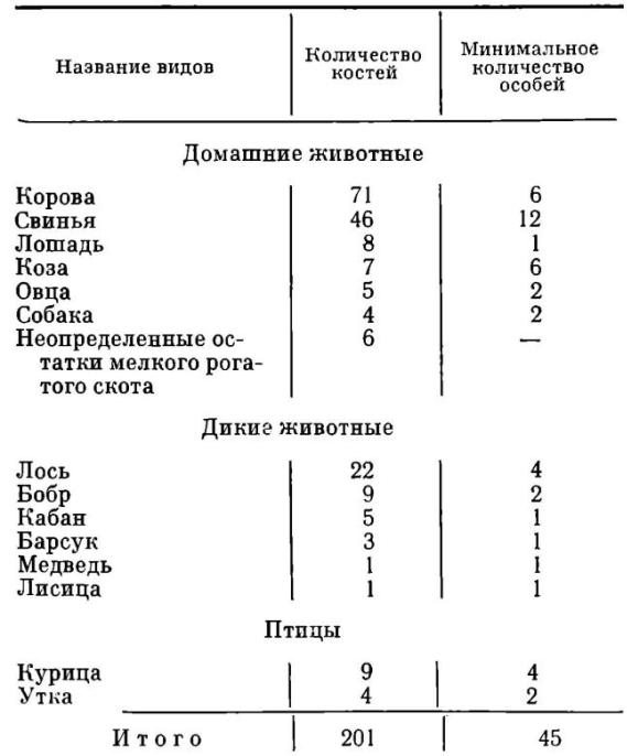 gorodishhe-osovik-10